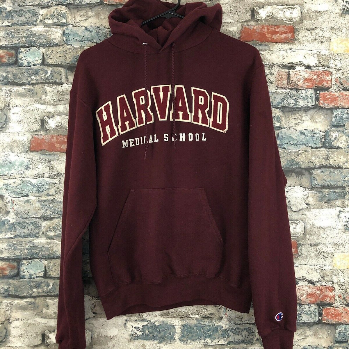 Pacsun Champion Harvard Sweatpants